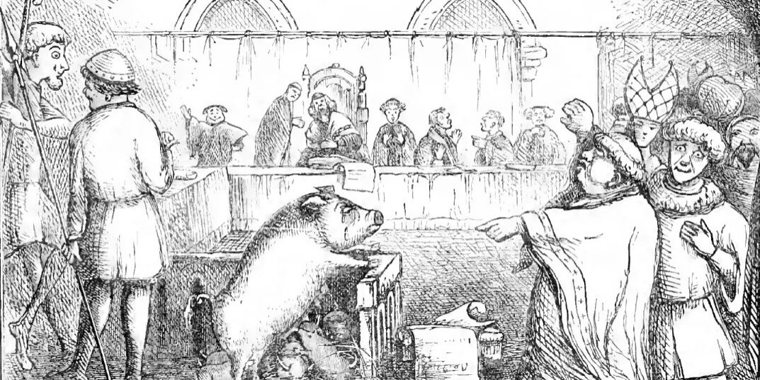 trial_of_a_sow_and_pigs_at_lavegny